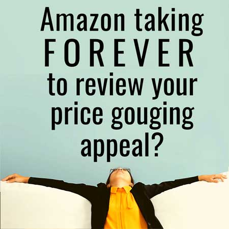 price gouging appeal to amazon